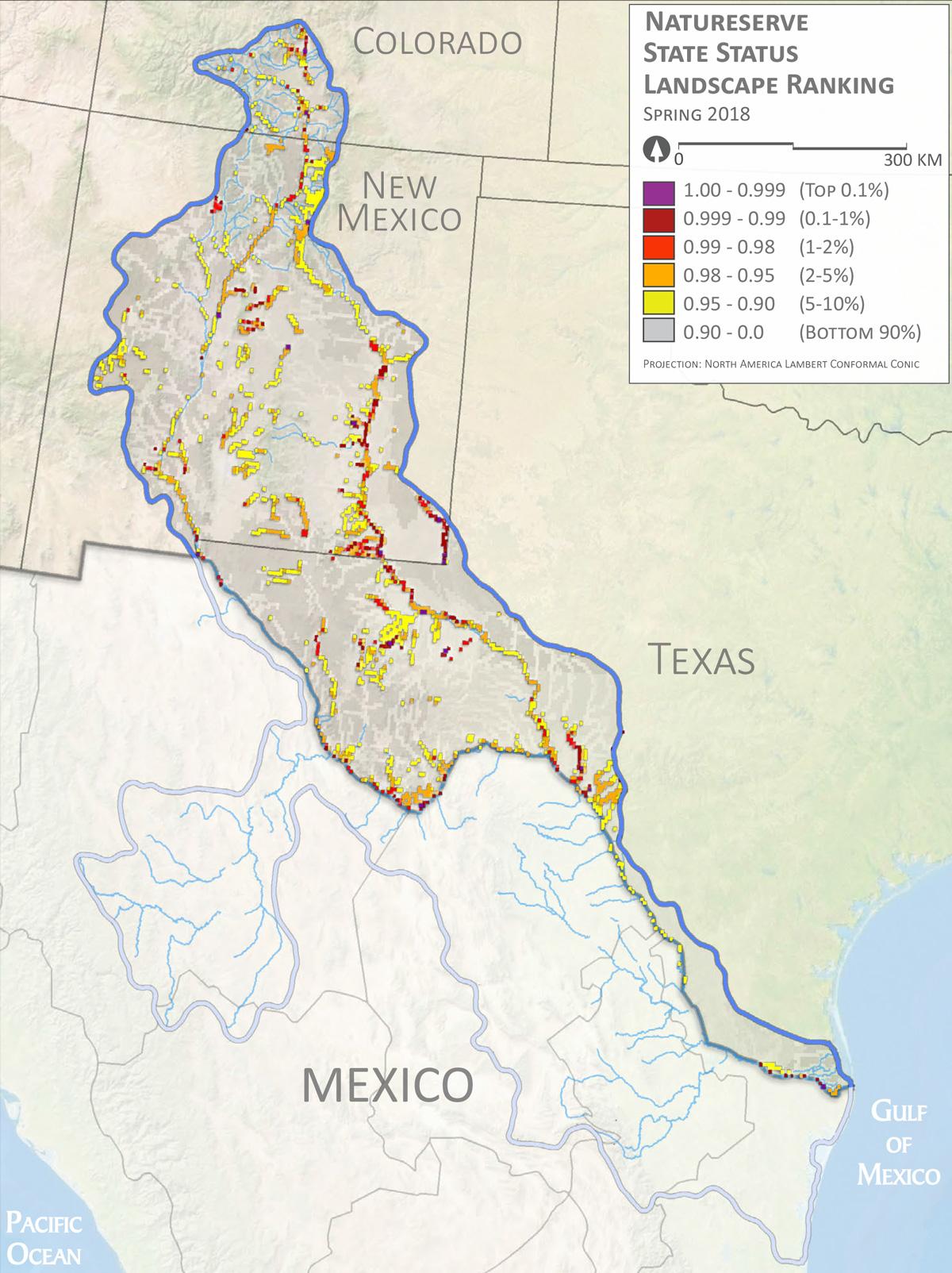 Rio Grande | Native Fish Conservation